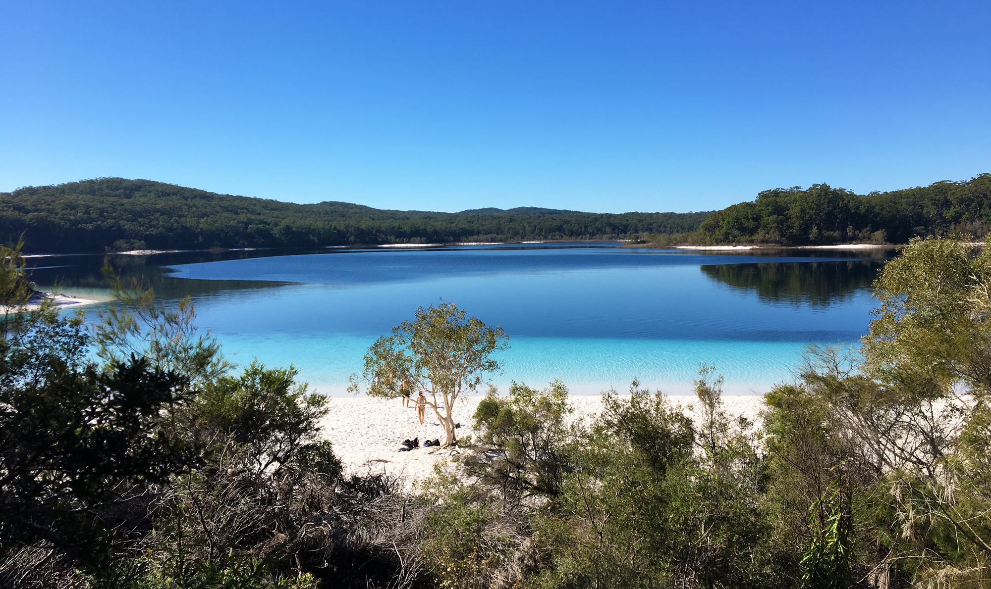 Fraser Island  Jours Camping Tour