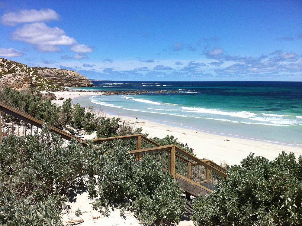Great Ocean Road kangaroo island melbourne adelaide