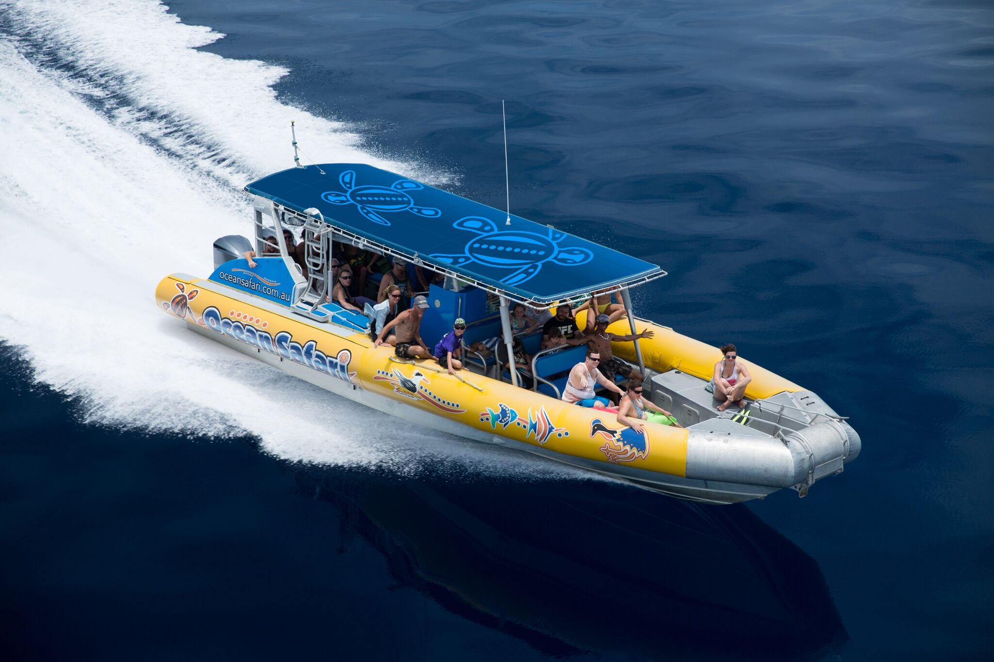 snorkeling grande barriere corail ocean safari