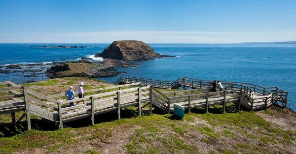 Phillip Island pingouins tour melbourne