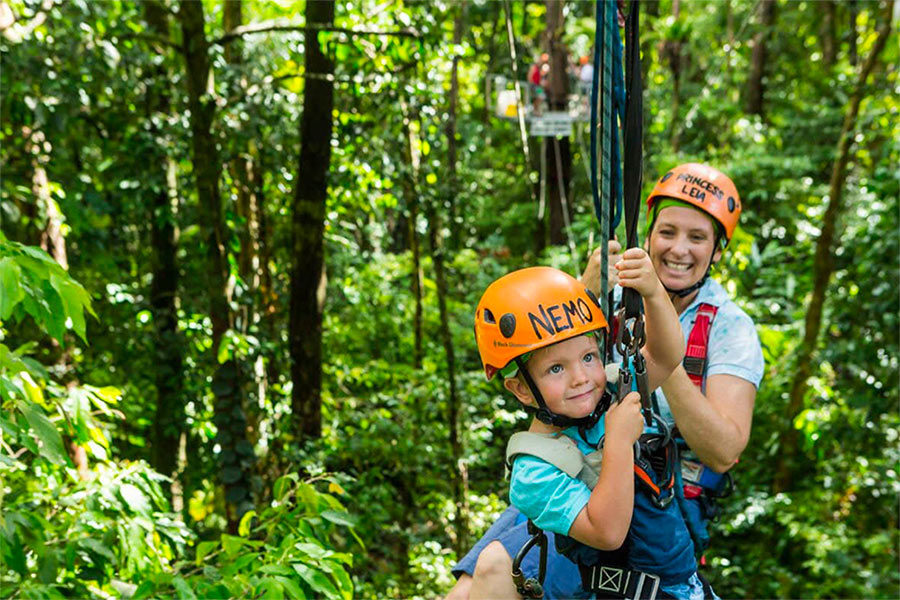 Daintree et cape tribulation