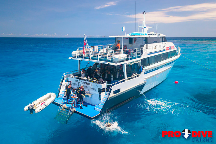 open water diver grande barriere